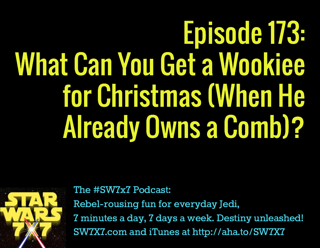 173-wookiee-for-christmas